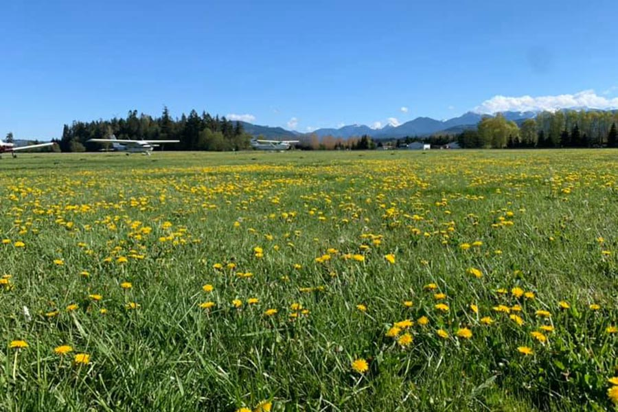 field at Sequim Airport